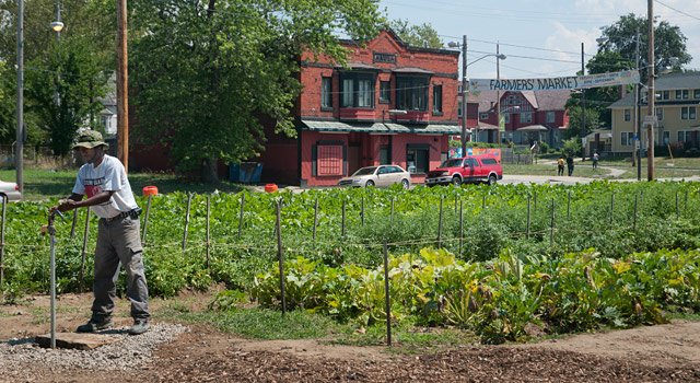Cleveland Crops in Glenville