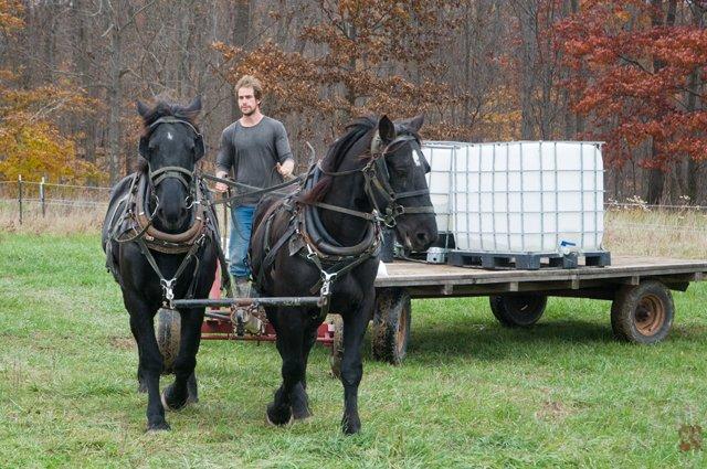 Mark Trapp - The Trapp Family Farm