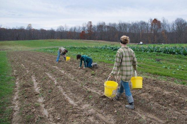 Emily Stefanak – The Trapp Family Farm