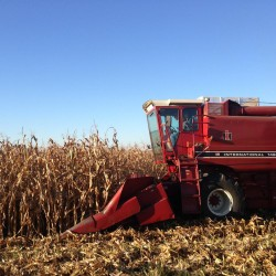 The Farmer and I: A Rookie's Field Guide to Farm Speak