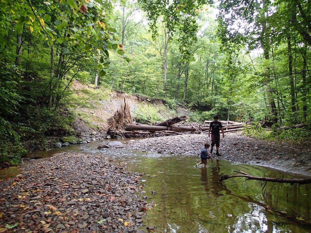 Geauga Park District's Swine Creek