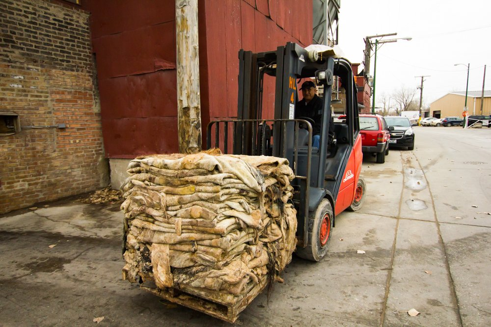 Horween Leather Co. is one of several industrial businesses that neighbor Finkl in the planned manufacturing districts along the Chicago River. Here, a Horween employee moves a compact stack of untreated animal hides between buildings. (Robin Amer)