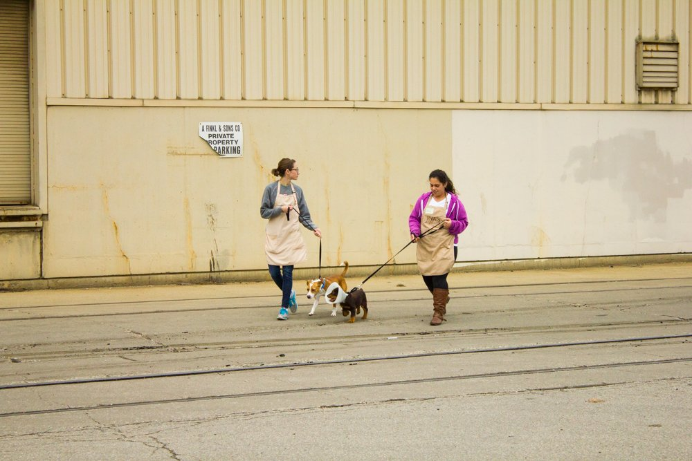 Employees of PAWS Chicago walk dogs down Kingsbury Street. The animal shelter is one of a number of businesses in the commercial buffer zone around Finkl and its industrial neighbors. (Robin Amer)