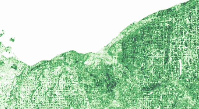 Money Does Grow on Trees: Canopy Cover Reflects Income Inequality