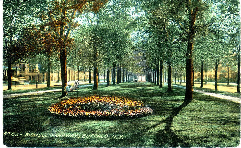 Bidwell Parkway [courtesy of Buffalo Olmsted Parks Conservancy]