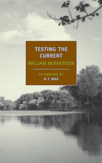Testing-the-Current cover s