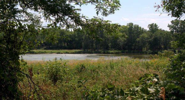 River Image 2