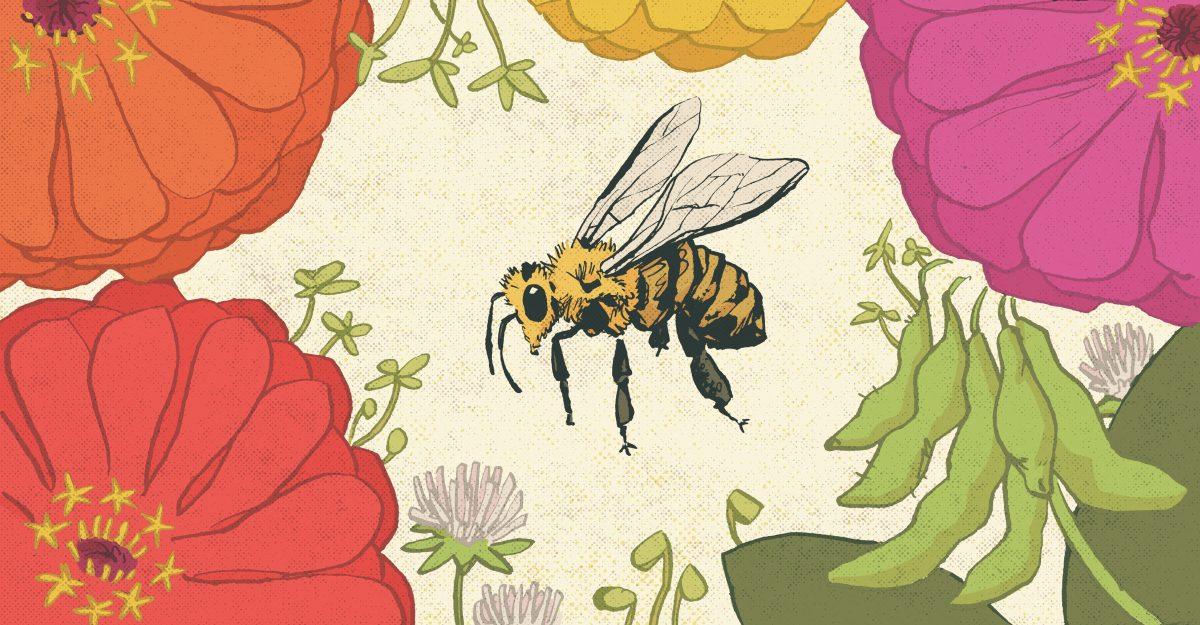 Bee with Flowers - David Wilson