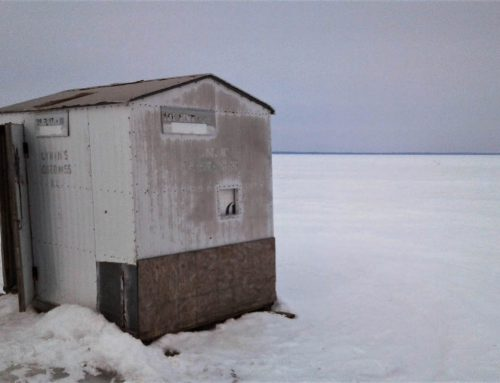 On the Ice in a Warming World